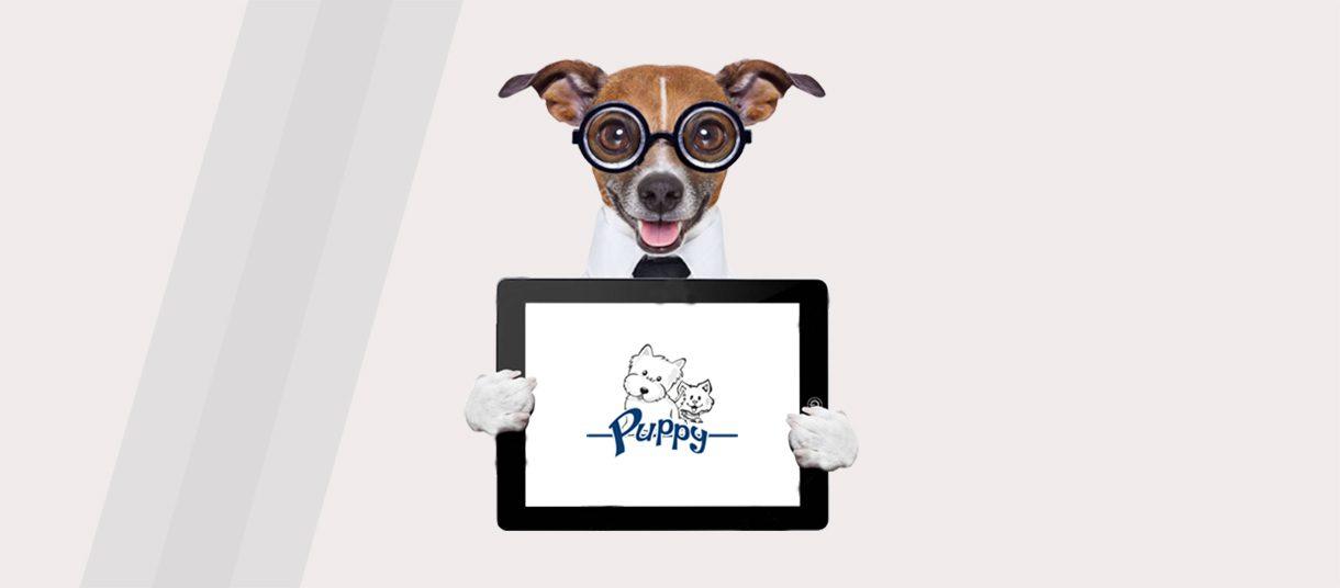 puppy-azienda-immagine3